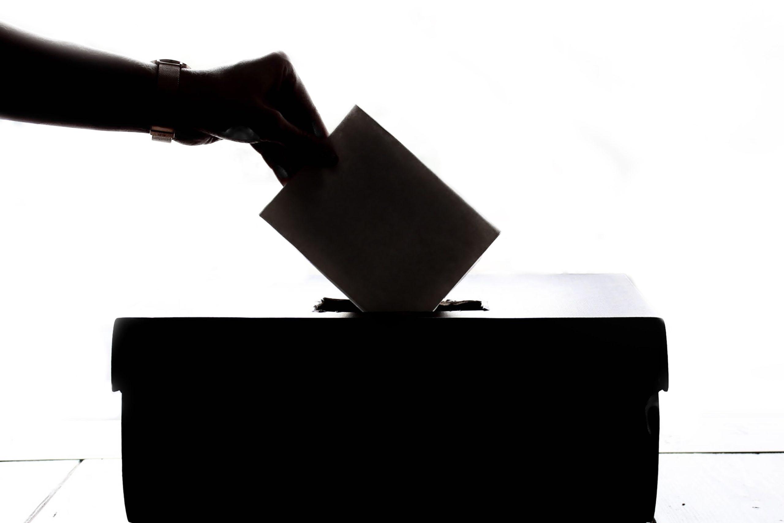 Cast a vote